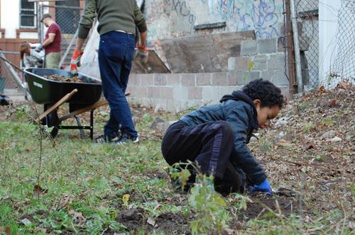 during the mild weather of the dec 3rd weekend the 462 halsey st community garden rallied 15 volunteers to help clean and start building a compost bin - Halsey Garden