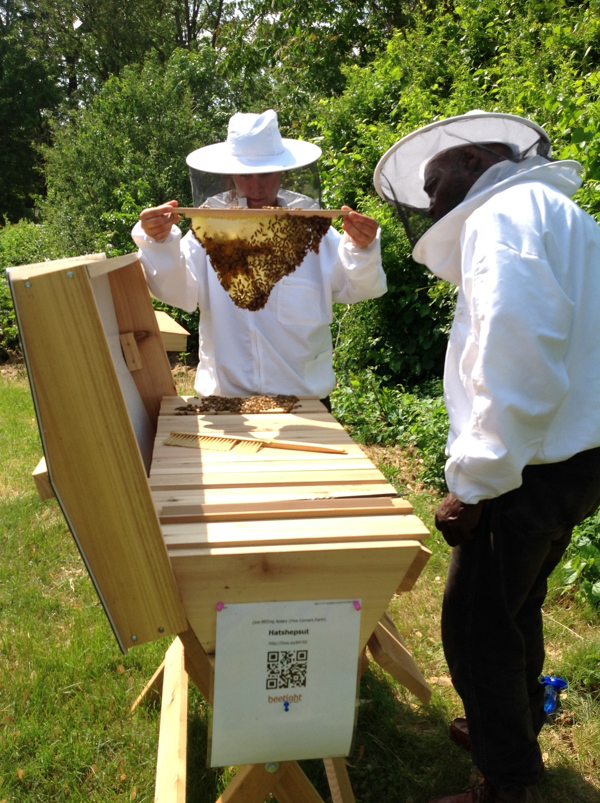 Emily and I inspecting our Hatshepsut hive, located at Hartford Food System's Five Corners farm