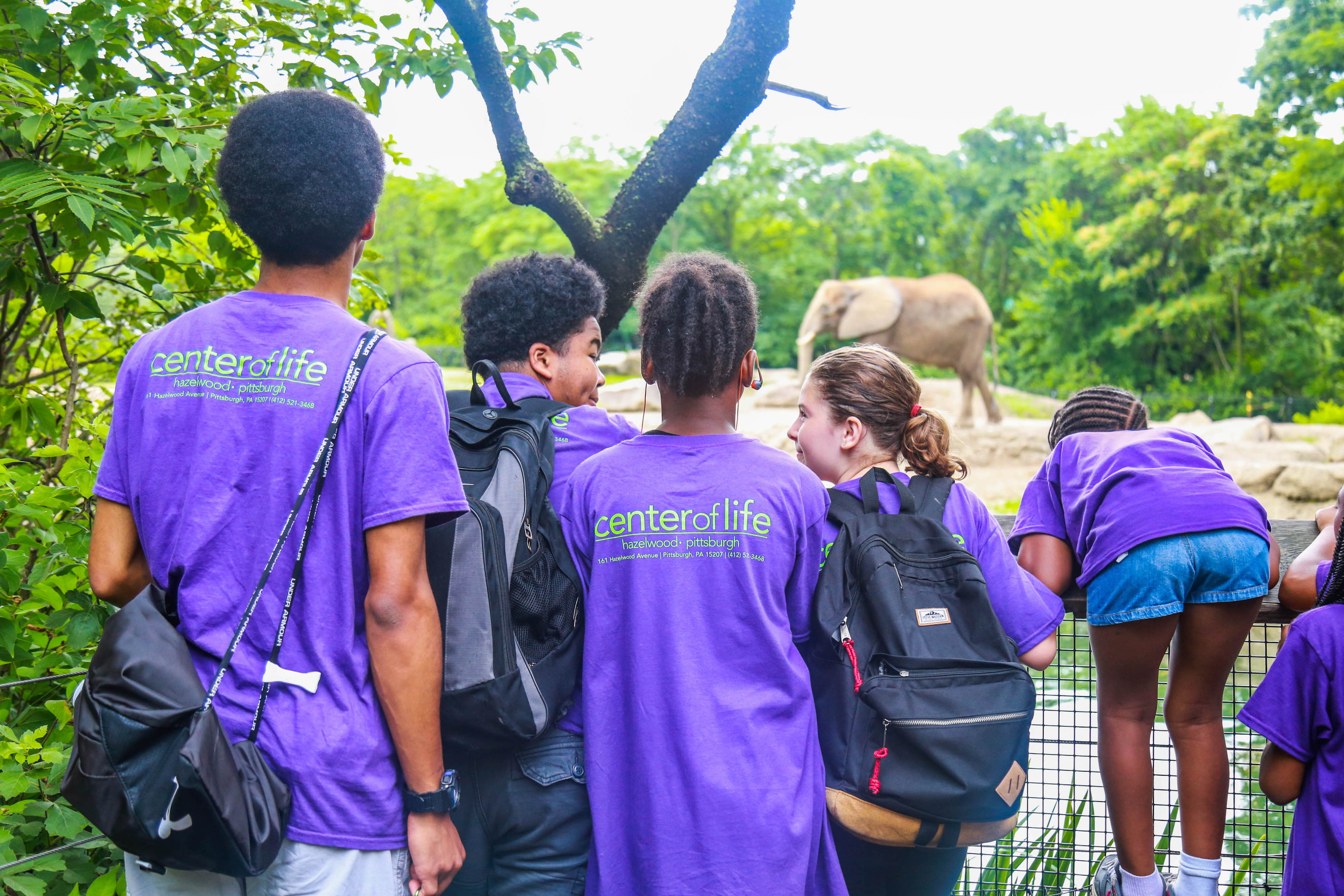 A group of Center of Life campers look at an elephant at the Pittsburgh Zoo