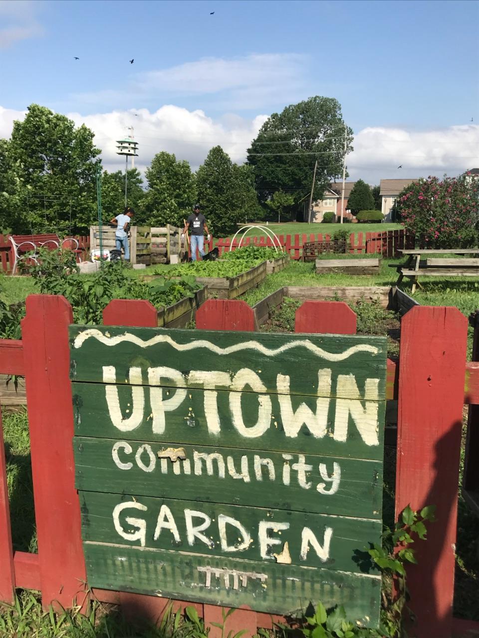 Uptown Community Garden