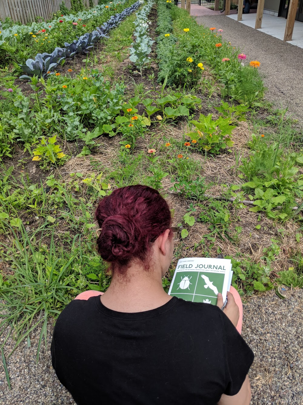 A student utilizing our field journal in a community garden