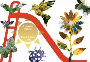 Schoolyard Habitats — Plants 4 Bugs 2 Play