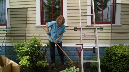 A woman using a hoe to clean up a garden with a ladder propped against the house in the background