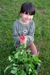 Our little girl demonstrates the joy of harvesting fresh, healthy food!
