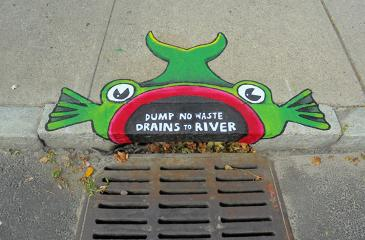 Lots of Fish's  50 years of Earth Day - Fifty Fish Storm Drain Art project