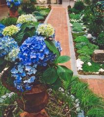 Garden Example, Tobacco Brown