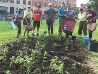 Students build Native Plant Garden on the Waltham Common