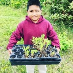 NYC students are helping to restore habitat for pollinators. c. Teri Brennan