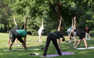 Yoga in the Park Franz Sigel Bronx