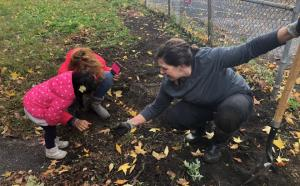 Help us in our efforts to make Brust Park beautiful