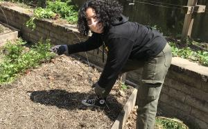 Social Distancing. gardening
