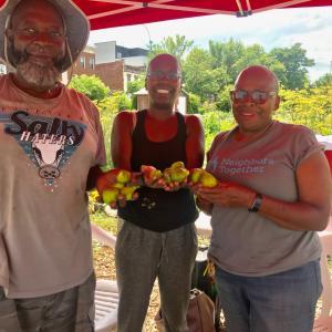 Phoenix Community Gardeners display fresh tomatoes.
