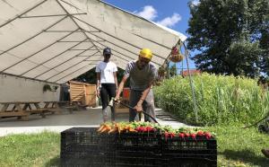 Garden Apprentices washing Farmstand produce