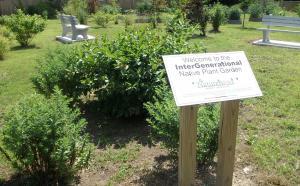 Intergenerational Native Plant Garden