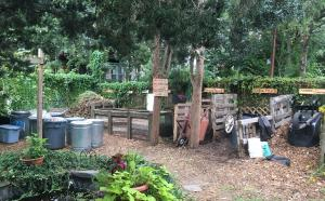 Existing compost area