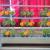 Vertical Garden Rack